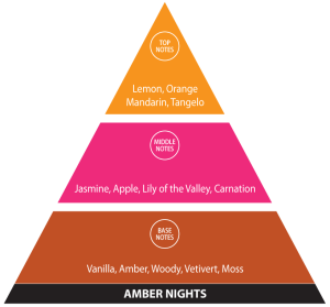 Fragrance Pyramid - Amber Nights