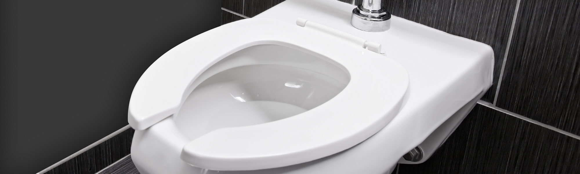Toilet Seat Germs and More