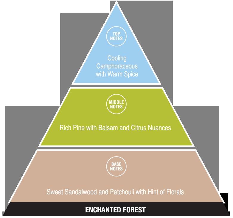 Enchanted Forest (exotic fragrances)