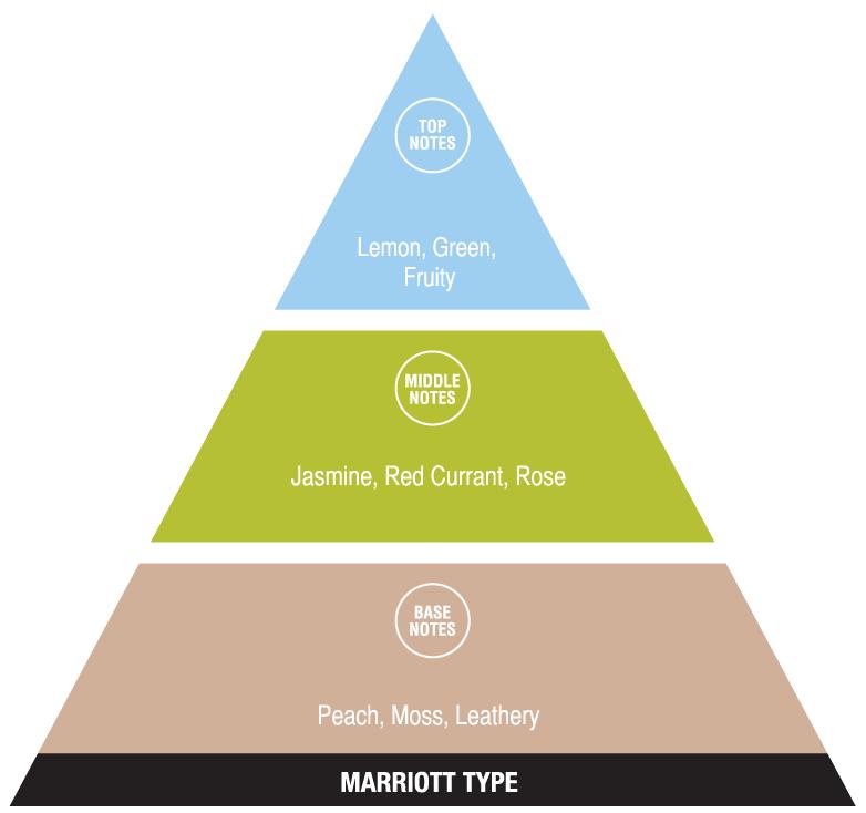 Marriott Type (exotic fragrances)
