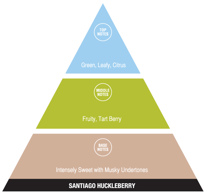 Sanitago Huckleberry (exotic fragrances)