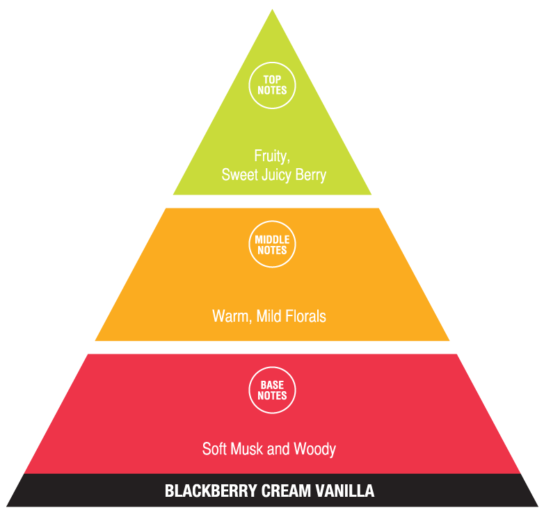 Blackberry Cream Vanilla (fun fragrances)